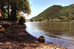 Donau in Rohrbach