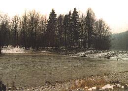 Almfluss bei Vorchdorf