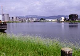 Donau bei Linz Pleschingerrecht