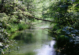 Nebenbach der Donau