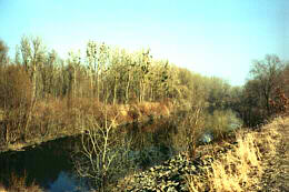Au/Donau