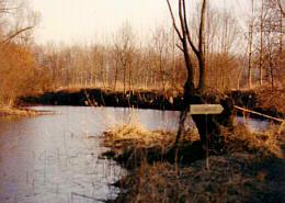 Au/Donau samt Innengewässer