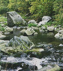 Große Mühl bei Neufelden Fließgewässer