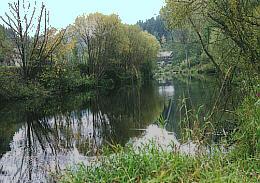 Große Mühl bei Neufelden Stillgewässer