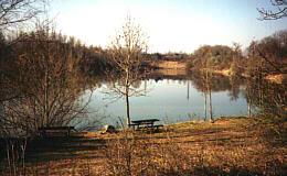 WSFV-Teich in Marchtrenk